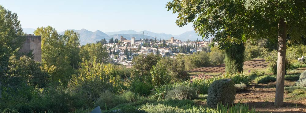 looking down on the town from the Alhambra gardens in Granada