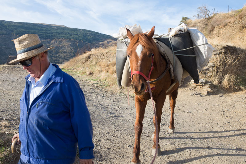 man with horse coming down the track toward the village of Capileira in the Sierra Navada in Andalusia